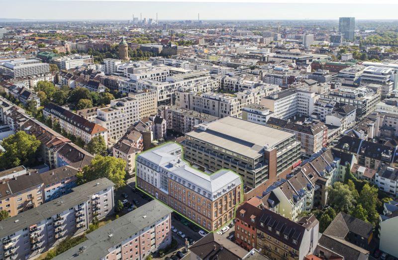 Institut Mannheim
